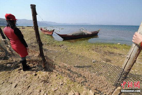 2月28日,位于云南省玉溪市江川县的抚仙湖因连年干旱使其水位下降1.8米 。抚仙湖是中国最大的深水型淡水湖泊。图为湖边搁浅的渔船。中新社发 任东 摄