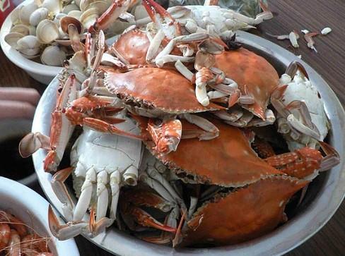 贝壳手工制作螃蟹步骤