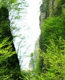 五月游野三坡百里峡