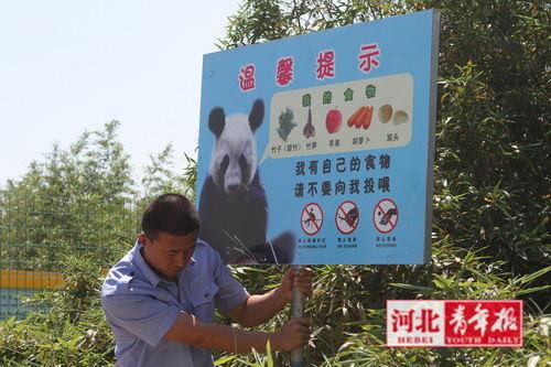 熊猫馆前的提示牌,提醒游客不要随意投食