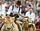 德国牛仔骑术大赛乐无穷