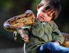 男童与蟒蛇为伴胆量惊人