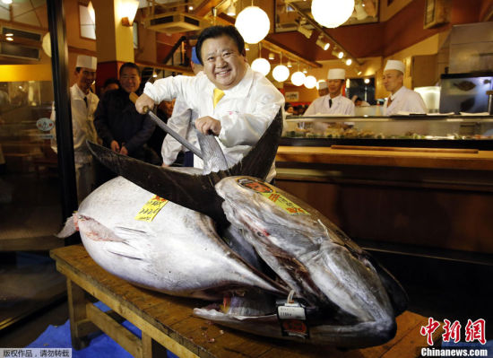 日本新年鱼市拍出史上最高价一条鱼1.55亿