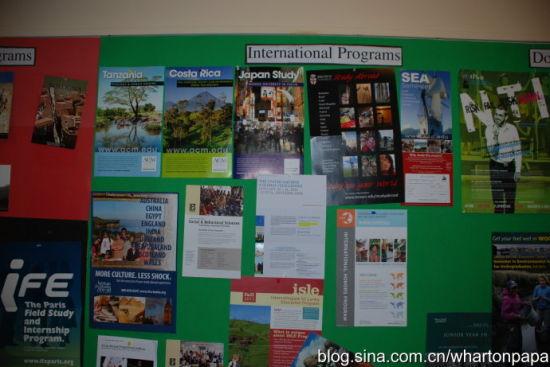 国外学习信息(图片来源:陈伟)