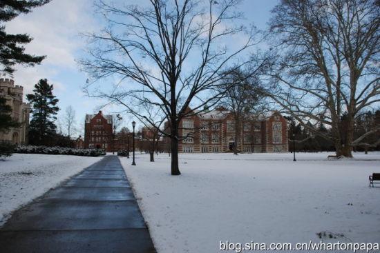 雪后校园(图片来源:陈伟)