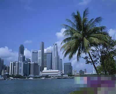 新加坡:高技术人才受青睐