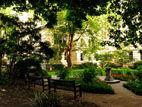 探寻伦敦的神秘花园