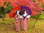 日本艺妓的浮世掠影