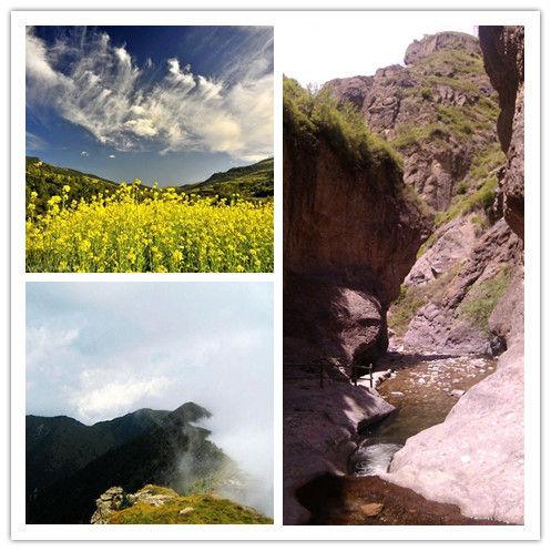 小五台山风景区塔林图片