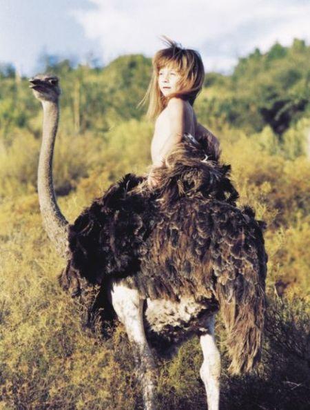 """""""小野人""""蒂皮与她的动物朋友的十年生活"""
