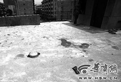藏獒就养在这个楼顶,孩子从栏杆处坠落 本报记者 赵航 摄