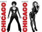 芝加哥海报性感诱惑丝袜长腿尽情秀