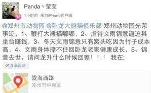 曝郑州动物园大熊猫被逼坐台 生存状况多次遭质疑