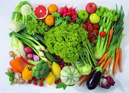 生蔬菜动物造型