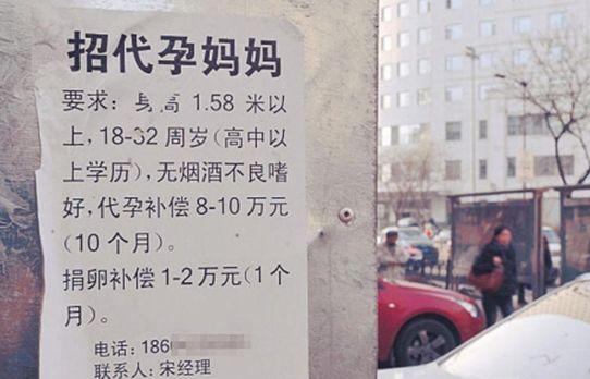 暗访武汉地下代孕灰色交易 85万包生男孩