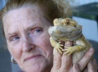 美國老婦用心肺復蘇術救活溺水寵物蜥蜴