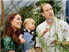 皇室宝贝也是萌萌哒童话里不是骗人的