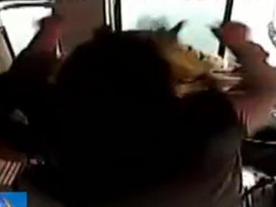 女子从公交后门上车遭拒 令老公暴打女司机