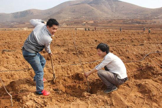 唐山卧龙谷现代农业让黄土变成金