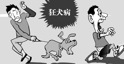 动漫 卡通 漫画 头像 500