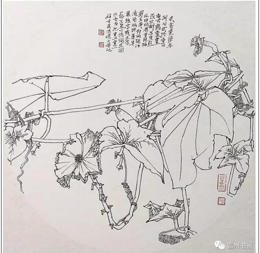 家门口的写生——姚占芳花卉线描精品展 展览预告