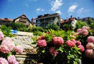 瑞士拉沃:沉醉莱蒙湖脚下